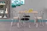 Jídelní stůl DAKO II.,chrom.nohy 80x100 S146
