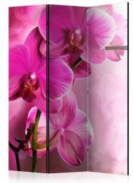 Paraván ružové orchidey 3 dielny