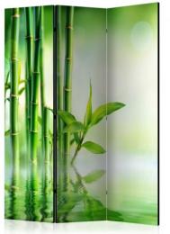 Paraván zelený bambus 3 dílný