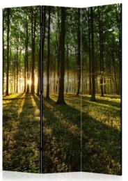 Paraván západ slnka v lese 3 dielny
