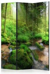 Paraván vlhký les 3tich dielny
